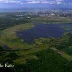 美々川・ウトナイ湖の自然