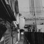 「'97東京」連載 (13)