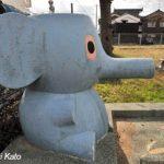 ゾウの鼻が…
