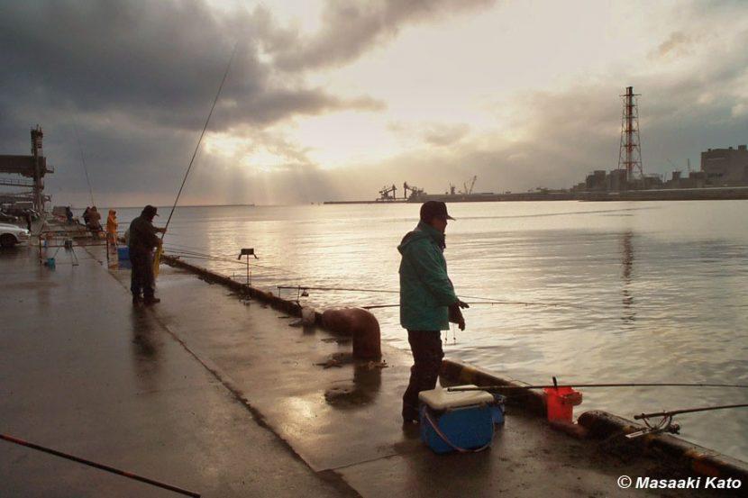 撮影:2000年11月14日 苫小牧東港/苫小牧東部大規模工業基地