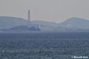 川内原発(右)と火力発電所(左)2014年4月25日 薩摩川内市で撮影