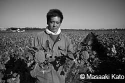 農民を追い払った土地に大規模農業を誘致!?
