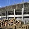 国立霞ヶ丘陸上競技場既存樹木移植等工事
