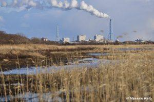 破たんした苫東工業基地内の弁天沼から厚真石炭火力発電所を望む 2015年3月23日撮影
