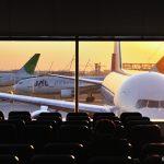 緑の翼(JALエコジェット)