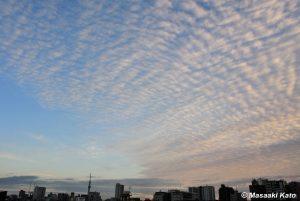 2019年12月29日16時過ぎの東尾久の空には一面のウロコ雲が……