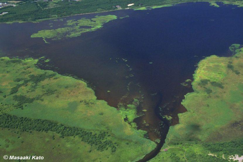 撮影:1993年8月16日 ウトナイ湖 苫小牧市の東約12kmに位置する海跡湖