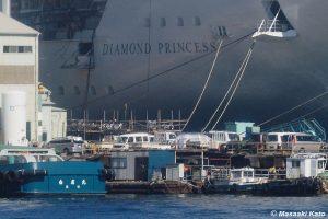 横浜に停泊中と同船「ダイヤモンド・プリンセス」(元サファイヤ・プリンセス) 撮影:2003年10月24日 三菱重工業長崎造船所