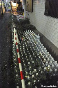 2008年12月30日 新宿富久町で撮影