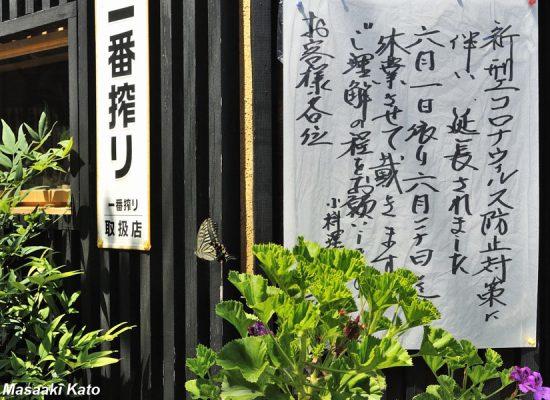 撮影:2021年6月10日 荒川区内の小料理店前 緊急事態宣言下でアルコールの提供ができず休業中の飲食店